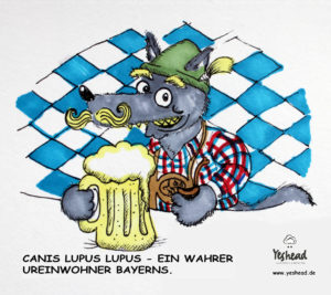 Wolfspaare - Wolf in Bayern