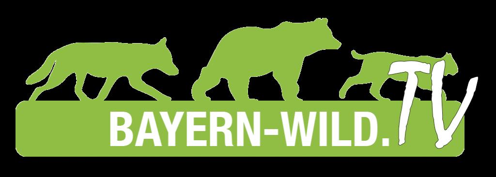 Bayern wild TV